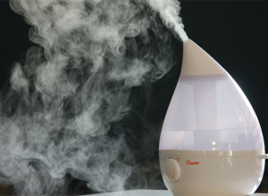 C+B Wish List: The Crane Humidifier